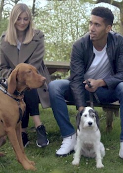 Smalling visits devastated dogs' home