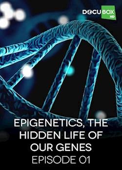 Epigenetics, The Hidden Life Of Our Genes