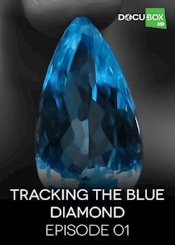 Tracking The Blue Diamond