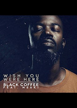 Black Coffee - Wish You Were Here (ft. Msaki)