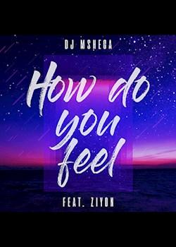 DJ Mshega - How Do You Feel (ft. Ziyon)