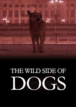 The Wild Side Of Dogs