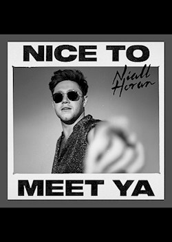 Niall Horan & Diplo - Nice To Meet Ya (Diplo Remix)