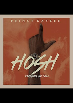 Prince Kaybee - Hosh (Visualizer) (ft. Sir Trill)